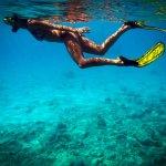 Onderwaterwereld Curacao